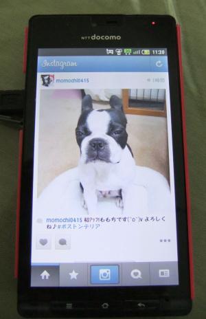 DSCF7588_copy_convert_20120418221624.jpg