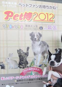 pethaku_convert_20120109101829.jpg