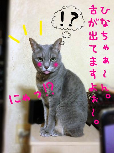 01_20130524194535.jpg