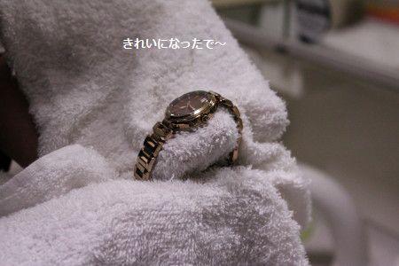 IMG_7737_1 きれ1