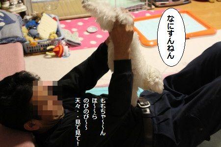 IMG_0870_1 きゃ^1