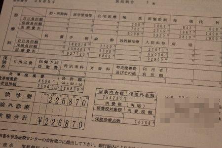 IMG_1100_1 せいきゅう2