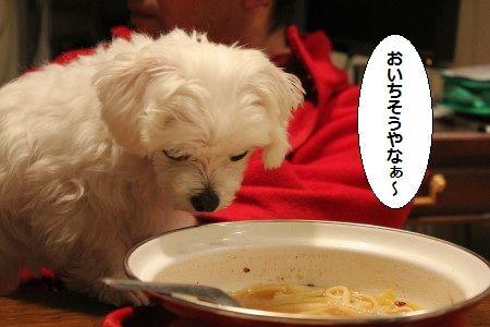 IMG_1574_1 おい 1