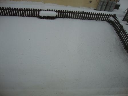 ドッグランの雪