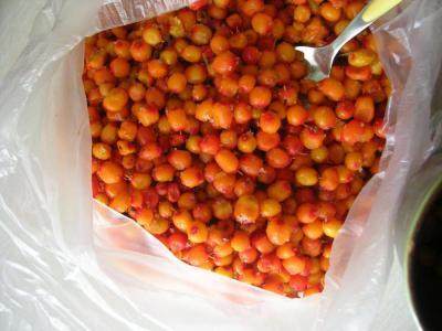 tsatsargaanfruit