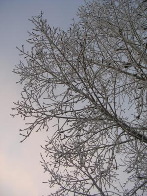 WinterArt