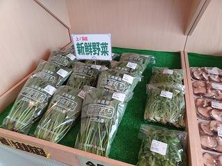 上ノ国町物産センター 商品