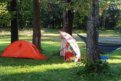 森のたね キャンプ ハンモック タープ