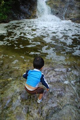 森のたね カムイワッカ湯の滝