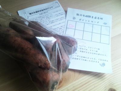 2012 3 24 carrot