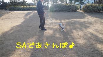 1横川SA到着