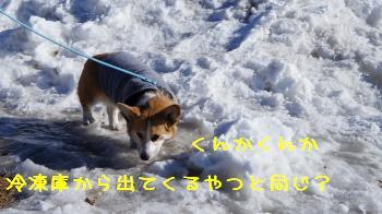 15初☆雪