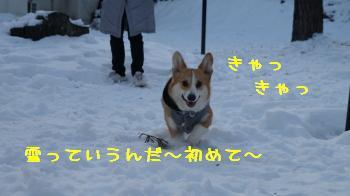 27雪っていうんだ~♪