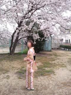 4,12先生と桜CA33UHX1