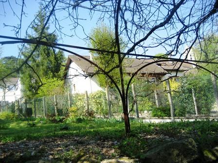 ドービニーの庭1