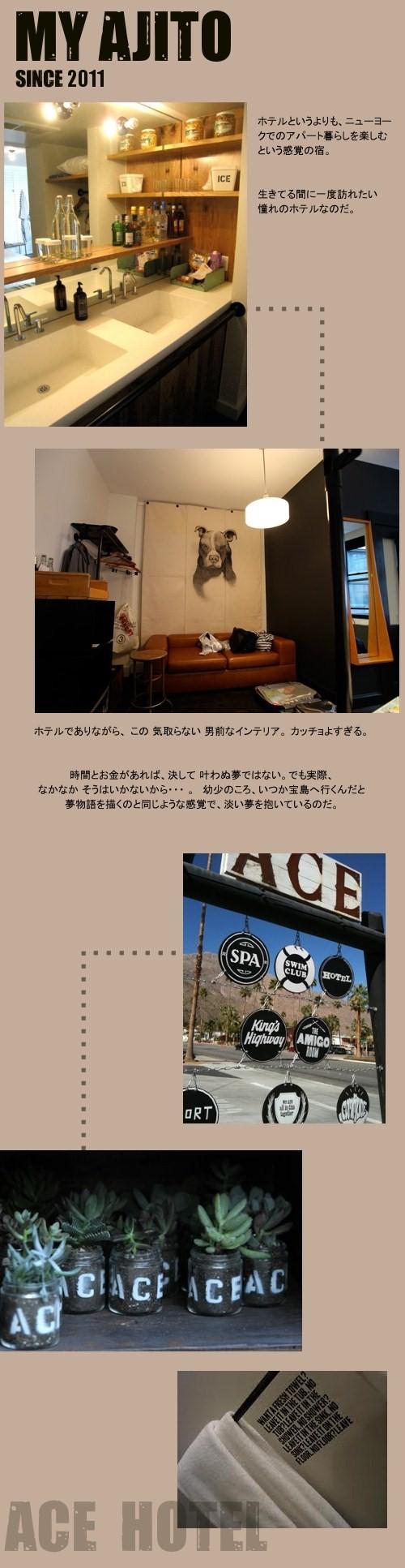 ACE_01.jpg
