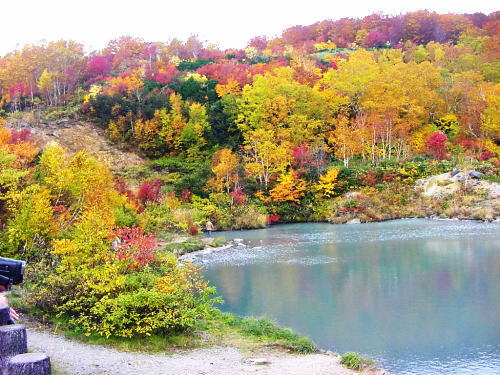 2011-10-13-kouyou.jpg