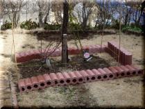 tntnH24-03-14ツルバラのブロック囲い (4)