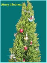 tntnH24-12-23クリスマスツリーモノクロ (1)_3