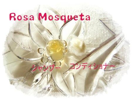 010_20111205140840.jpg
