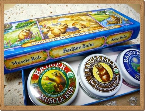 badger_3_20111125143052.jpg