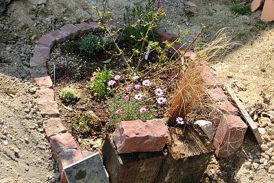 0325-6花壇作り