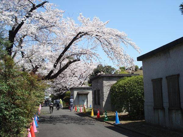 2012-04-08_66.jpg