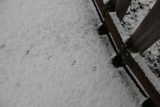 鍾乳洞の冬 (6)