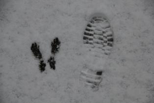 鍾乳洞の冬 (4)