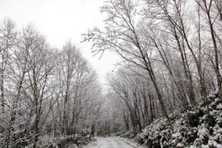 鍾乳洞の冬