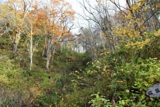 10月23日 秋の紅葉登山 (3)
