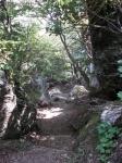 愛宕山下山と月輪寺04