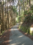 愛宕山下山と月輪寺29