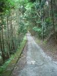 愛宕山下山と月輪寺28
