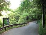 愛宕山下山と月輪寺32