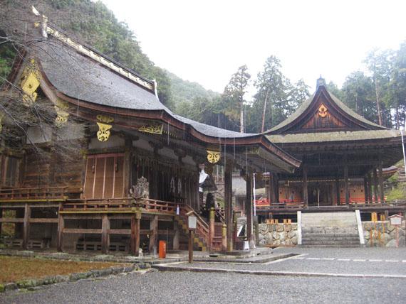 日吉・東本宮-樹下神社01