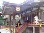 日吉・東本宮-樹下神社02