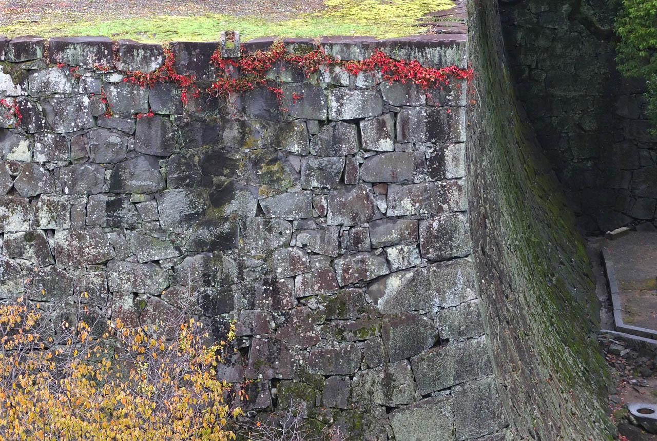 0451 石垣と紅葉 1280×860