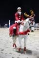 サンタ誘導馬 2