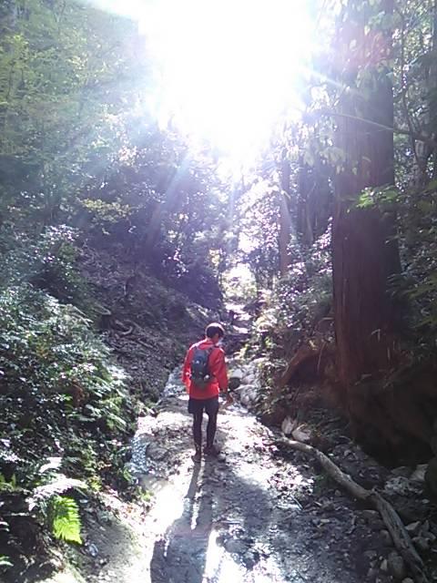 京都トレイル下山