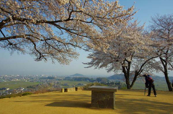 明日香 甘樫の丘