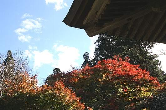 yamizo0-2.jpg