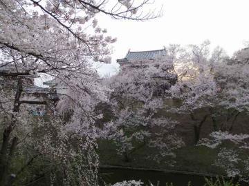 上田公園1