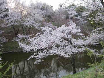 上田公園2