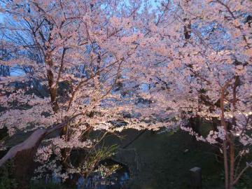上田公園5