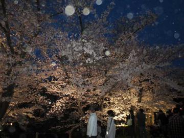 上田公園7
