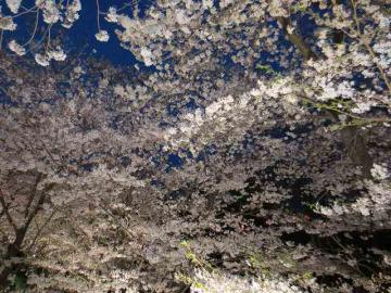 上田公園8