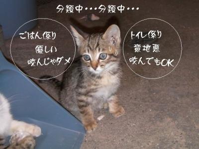 仲良し組03