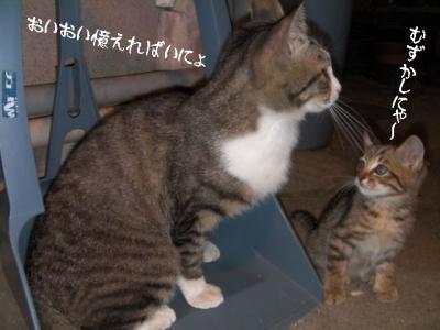 仲良し組04