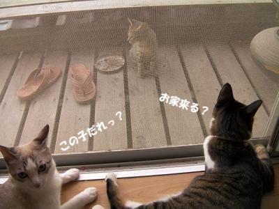ご対面02